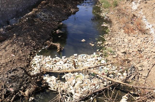 En Yancuitlalpan denuncian contaminación por granja porcina