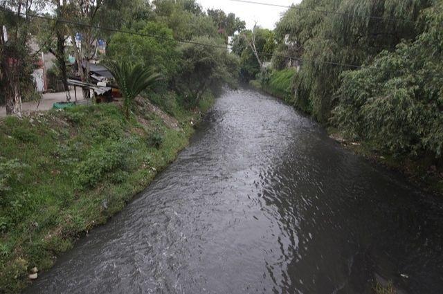 Reportan presencia de un cocodrilo en el río Atoyac