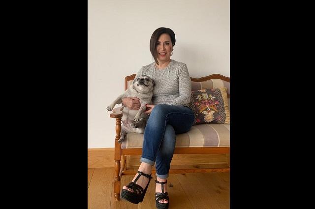 Rosario Robles pide a Sheinbaum que envié registros de licencia falsa