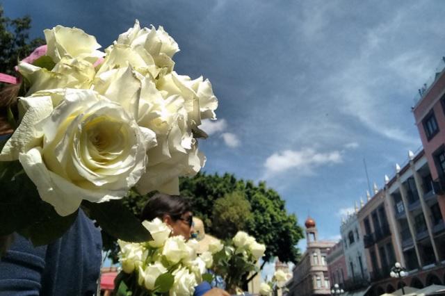Marchan con rosas blancas para tirar a Martha Erika de la silla