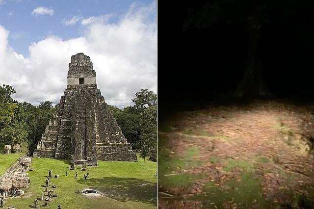Trabajador registra ruidos extraños en parque maya de Guatemala