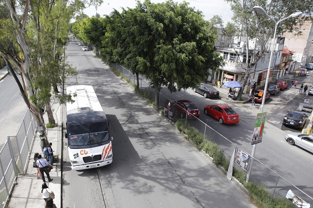 Excavadora en obra de RUTA 3 quema árboles sobre Bulevar Valsequillo