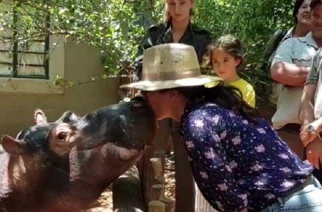 Salma Hayek besa a un hipopótamo y a su hija parece no agradarle la idea