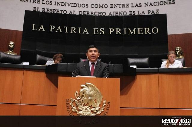 Morena propone en el Senado veda de 10 años para chapulines fifís