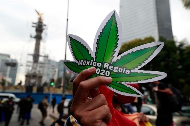 SCJN permite uso recreativo de la marihuana