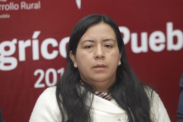 Llama ASF a comparecer a secretaria de Desarrollo Rural