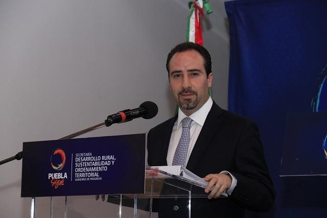 Rodrigo Riestra señala que pese a críticas no renunciará a SDRSOT