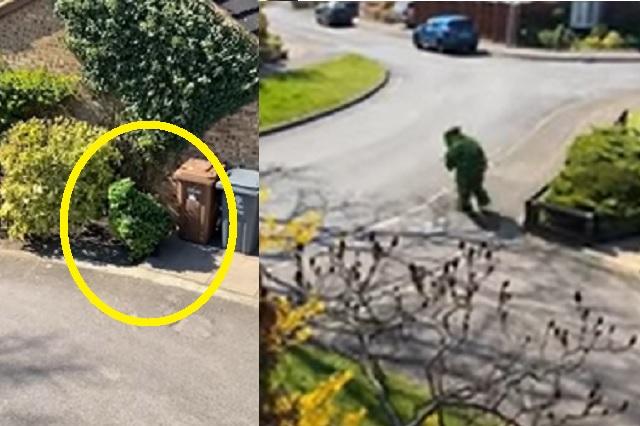 Hombre se disfraza de arbusto para evadir cuarentena en Reino Unido