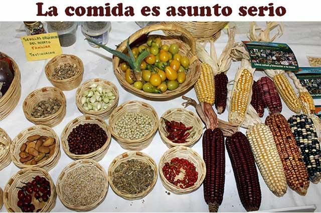 Revela encuesta mala alimentación en 28% de hogares mexicanos