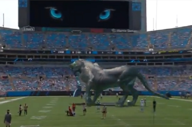 Foto: Captura de pantalla de Twitter / @Panthers