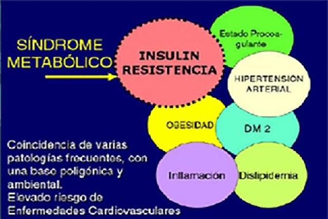 Síndrome metabólico mata en México a 130 mil personas al año