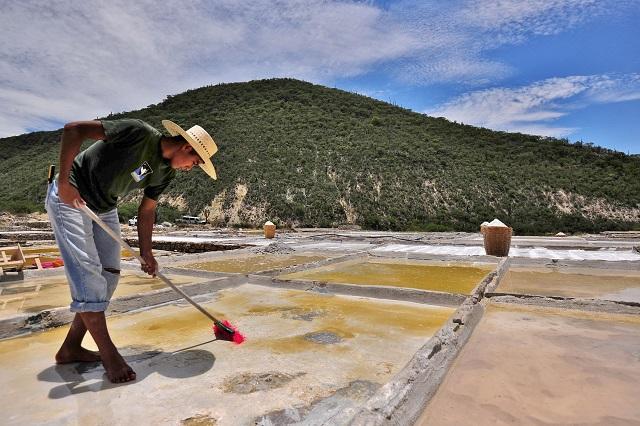 Valle de Tehuacán-Cuicatlán podría convertirse en Patrimonio Mundial