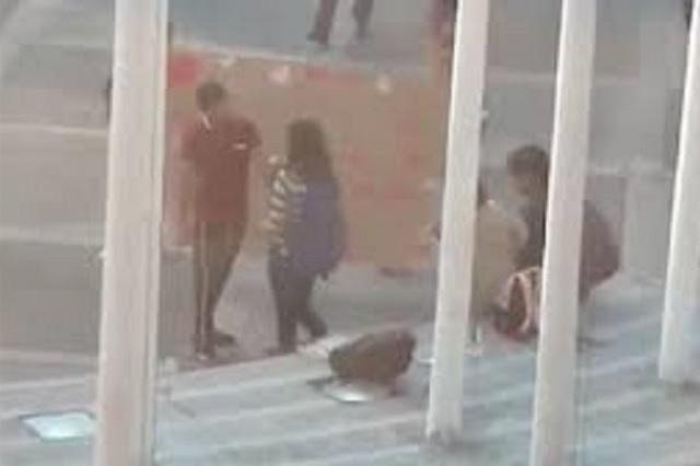 Video: Captan a un joven declarándose el 14 de febrero y lo rechazan