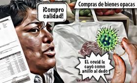 Karina Pérez, como anillo al dedo la emergencia sanitaria
