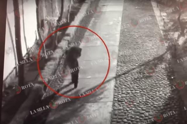 PGJ va tras dos implicados en el asesinato de Ingrid Alison en Tlatelolco