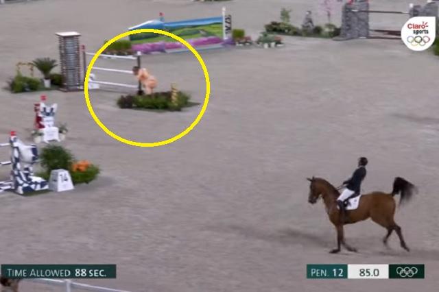 'Sumos' asustaron a caballos en eventos ecuestres de Tokio