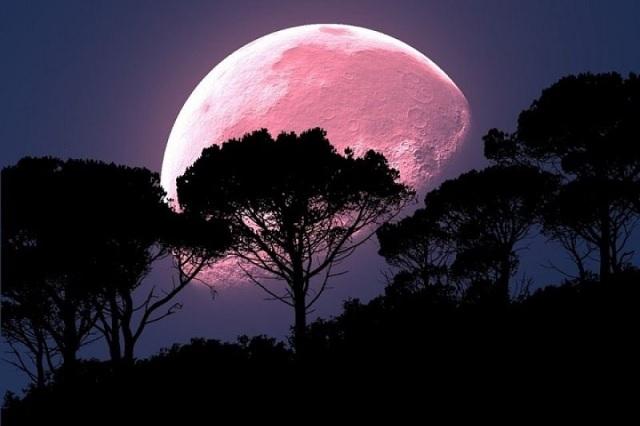 Este martes habrá Superluna rosa, la más brillante y cercana a la tierra de 2020