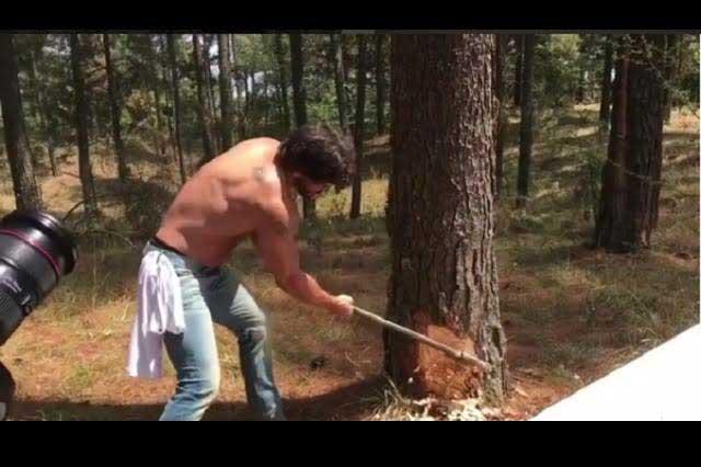Cristián de la Fuente tala un árbol y José Ron le recrimina su acción