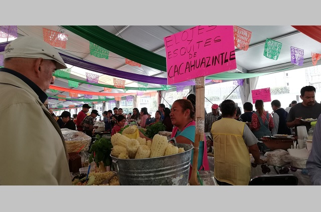 Por pandemia aumenta demanda de tarjetas sanitarias en Tehuacán