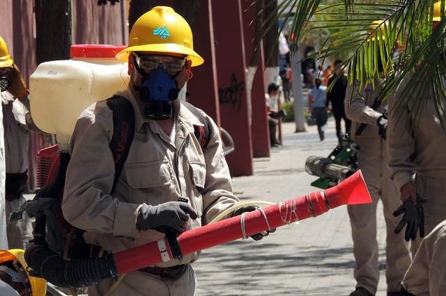 Ahora se disparan 289% los contagios de dengue en Puebla