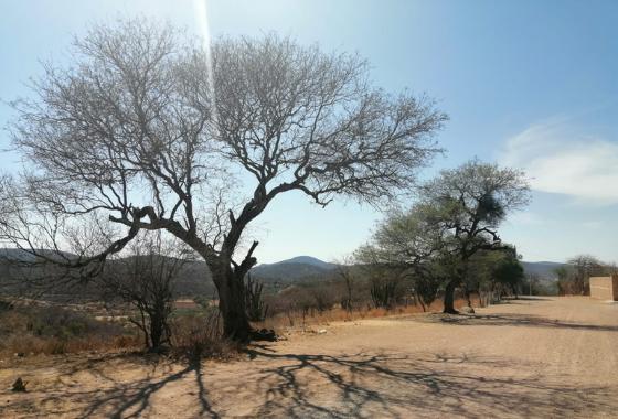 Se intensifica el calor en comunidades de la región Mixteca