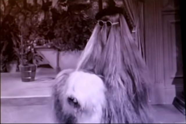 Murió Félix Silla, actor que es recordado como el Tío Cosa en Los Locos Adams