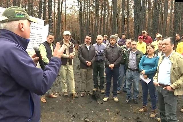 Granjas Carroll apoya recuperación de bosques en campañas de reforestación