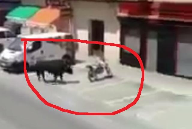 ¿Mujer tenía sexo mientras grababa a toro destrozando una moto?