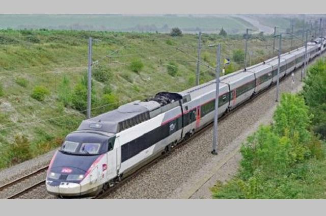 Tren Maya agregará valor a la producción agroalimentaria en 2023