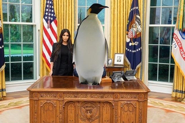 ¿Trump es un pingüino? Checa el nuevo reto viral de Twitter