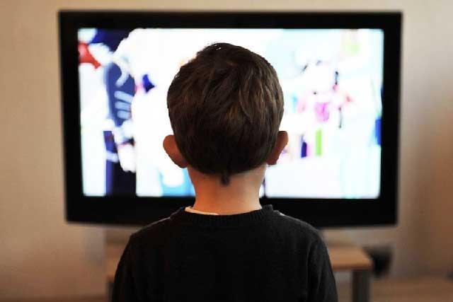 Nos conformamos con lo que enseña la tv y el celular, advierte experta