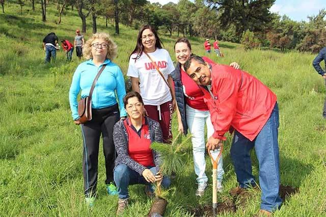 Comunidad de la Universidad Madero reforesta cerro Zapotecas