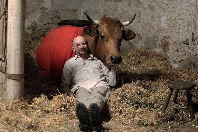 No se metan con mi vaca, la ventura de un granjero argelino por Francia