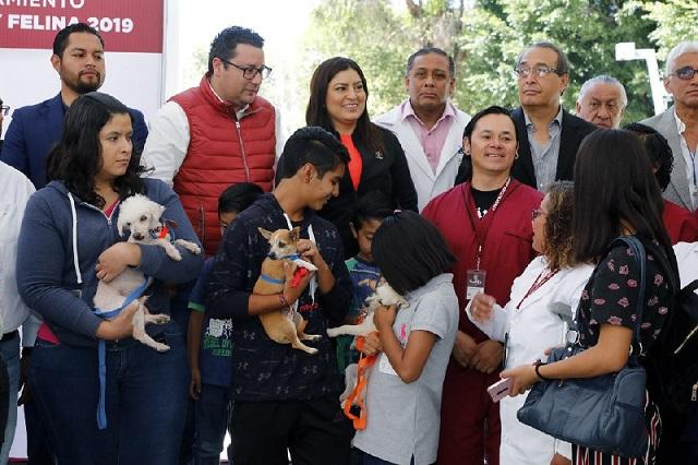 Vacunarán a perros y gatos en la capital poblana, esta semana