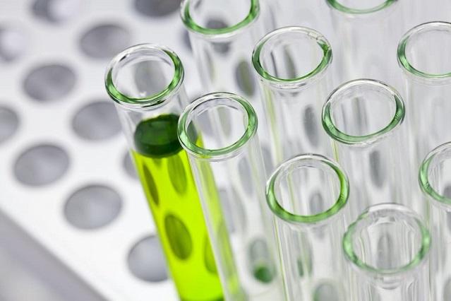 Laboratorio asegura que su vacuna contra Covid-19 es eficaz en animales