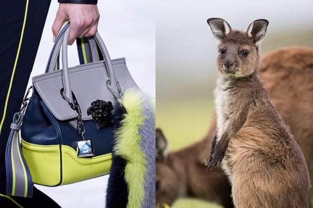 Versace dejará de usar piel de canguro tras incendios en Australia