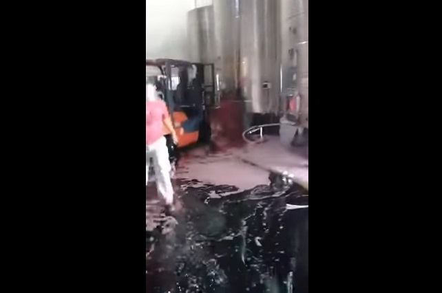 Video en YouTube muestra un lago de vino derramado por error humano