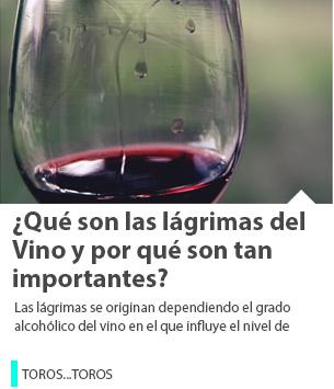 ¿Qué son las lágrimas del Vino y por qué son tan importantes?