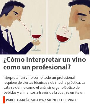 ¿Cómo interpretar un vino como un profesional?