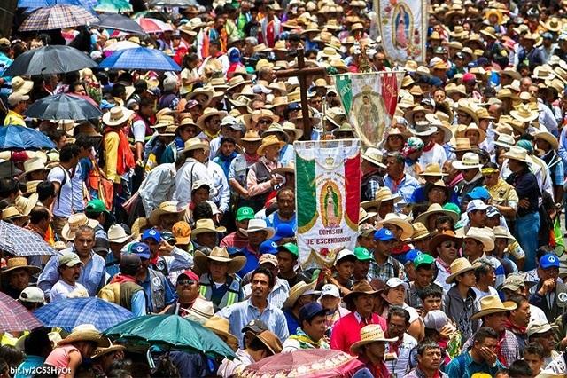 El culto guadalupano, elemento de cohesión social