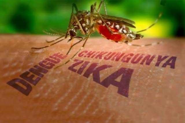 Hay 7 infectados con el virus del Zika en Nueva York