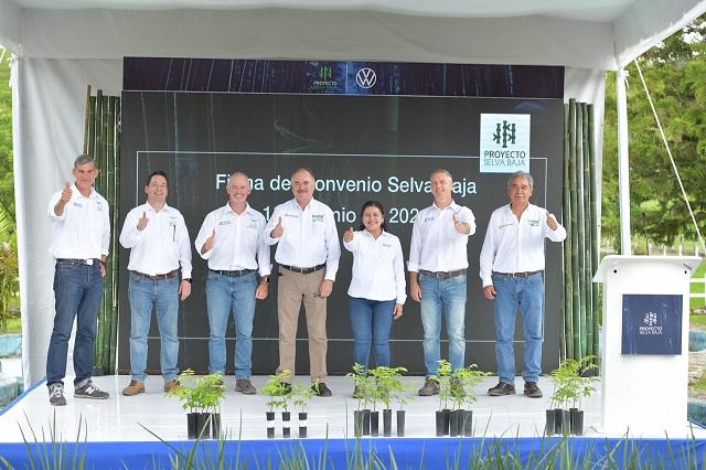 Apoya VW plantación de 150 mil árboles en Hueytamalco, Puebla