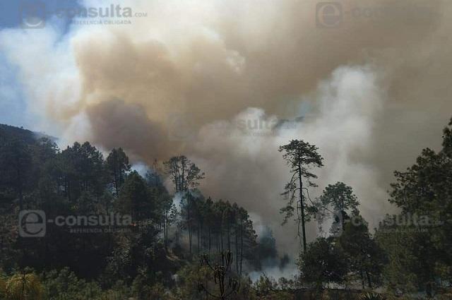 Incendio consume cerro en Zautla desde el martes