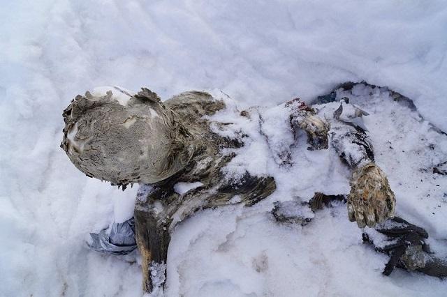 Rescatan a alpinistas momificados en el Pico de Orizaba tras 59 años
