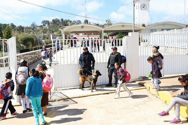 Equipo K9 trabaja en Zacatlán para detectar drogas y armas