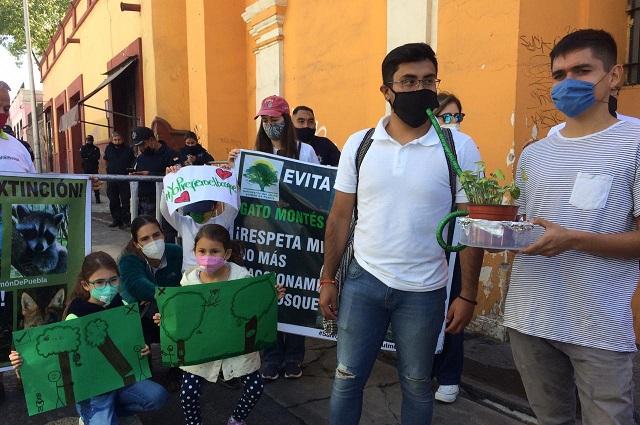 Demandan ampliar protección a 1,200 hectáreas en Flor de Bosque
