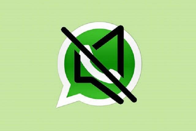 ¿Ya conoces las nuevas funciones de WhatsApp?