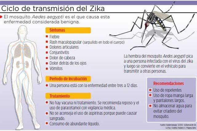 En México ya van 37 casos de infectados con el virus del zika